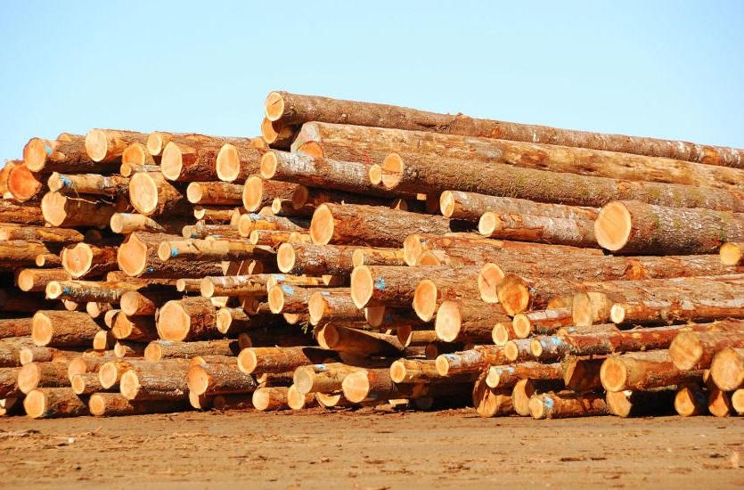 строительная древесина