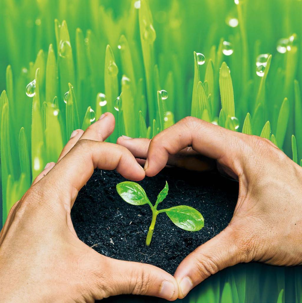 микроудобрения для растений